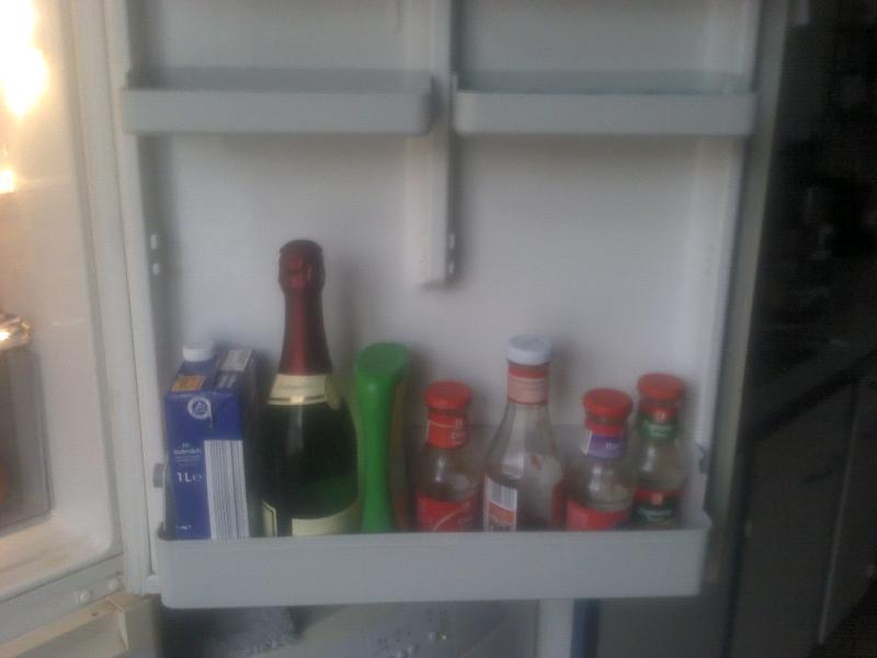 Kühlschrank vom 19.01.2011 - 1