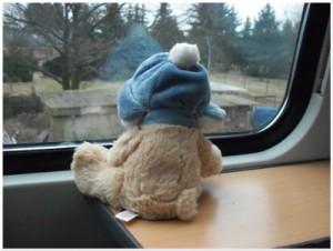 Teddy Bär hat Fernweh