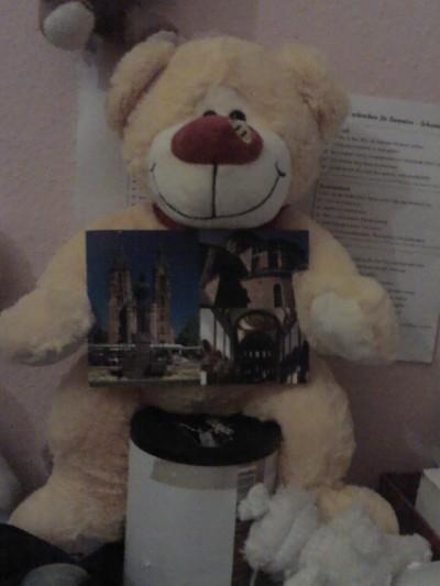 Bär mit Juttas Postkarte